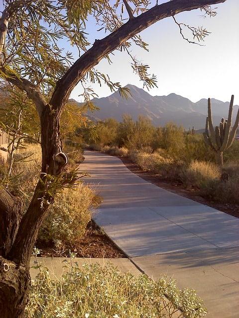 phoenix area hikes
