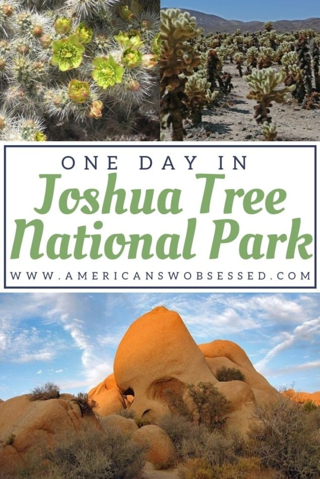 Joshua Tree Hikes