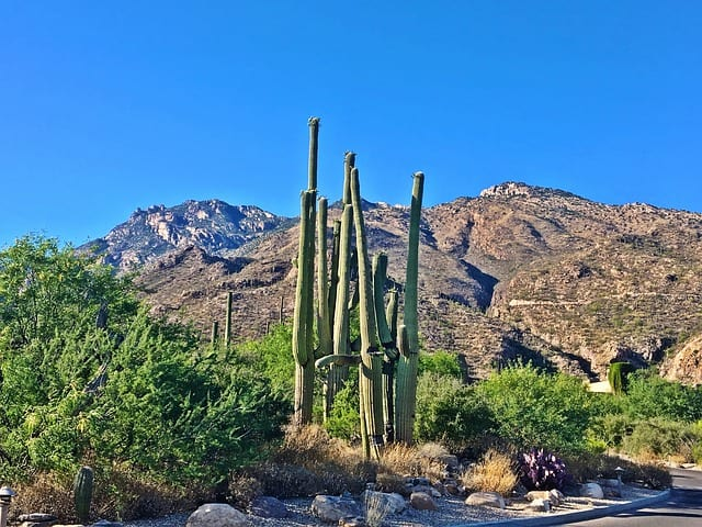 hikes around phoenix