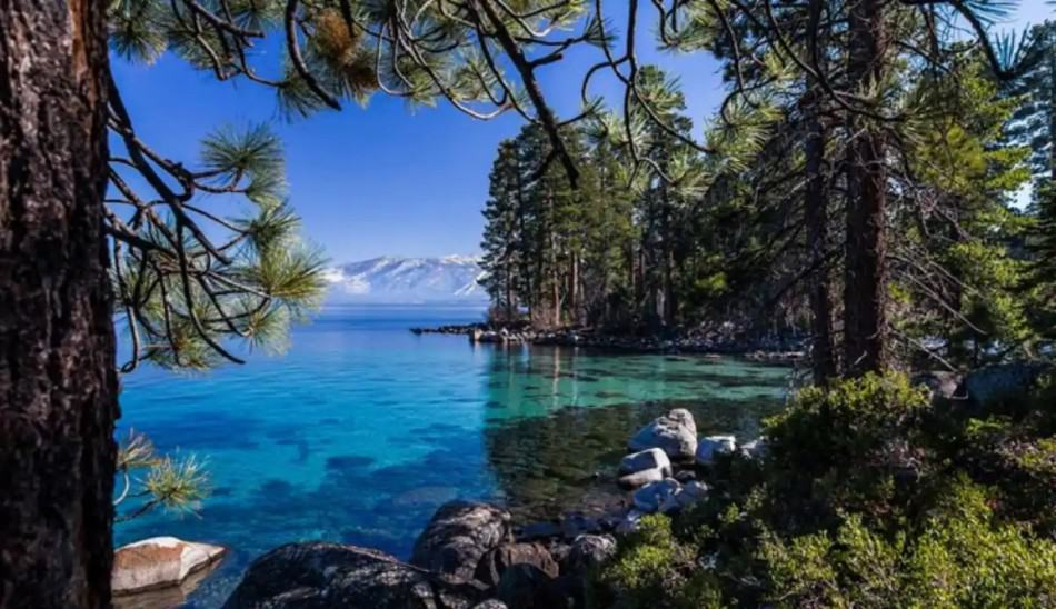 airbnb in south lake tahoe